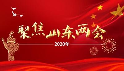 刘家义、龚正、付志方、杨东奇分别参加所在代表团审议