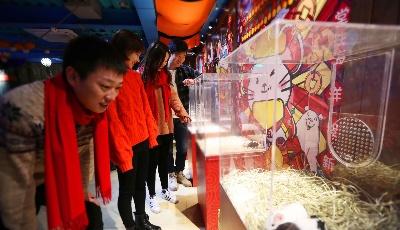 鼠不尽的鲸喜年味,青岛极地春节特惠低至9块9!