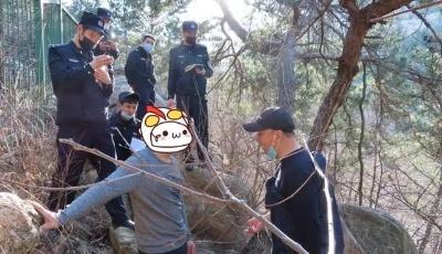 """3天2起林火!7人被处罚! 一图看懂""""森林火灾罪与罚"""""""