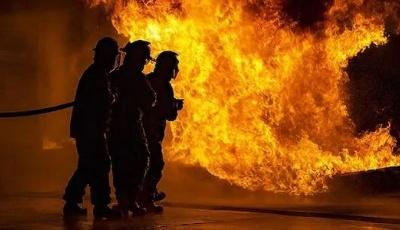 青岛市森林专职消防员增招公告