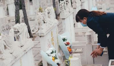"""公墓提供""""代祭""""服务 设立绿色低碳祭扫奖励资金 胶州清明""""新风""""寄哀思"""
