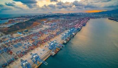 上半年青島外貿進出口2864.4億元  同比增長1.8%  占全省總值三成