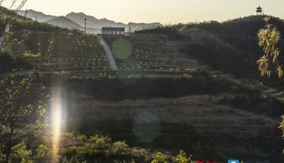山東省委書記劉家義代表:努力打造鄉村振興的齊魯樣板