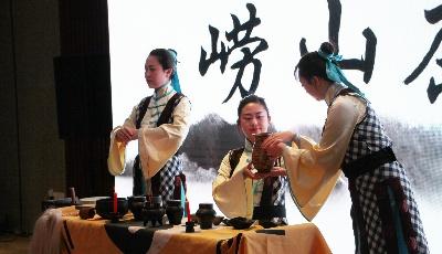 品牌活动推动崂山茶产业增效升级  第17届崂山茶文化节启幕