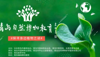 對標學深圳 青島首個自然博物教育上線