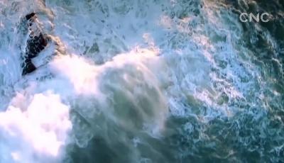 【视频】乘风破浪 中国外贸如何危中寻机?