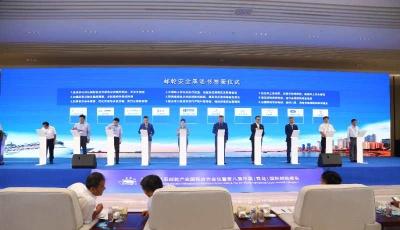国内外专家巅峰对话 邮轮安全成关键词  第八届中国(青岛)国际邮轮峰会助推邮轮产业加快复苏