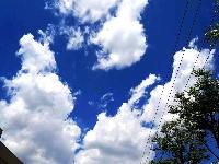 图集 | 秋之云语