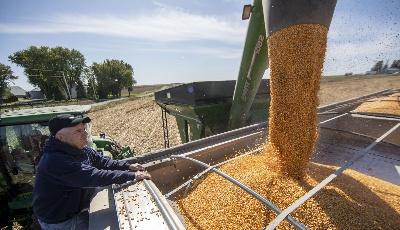 美国农业部《2029农业展望报告》:未来十年影响农业市场的主要作用力和不确定因素