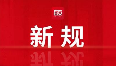 """为民营和中小大发快3解难纾困,青岛创造多项""""第一"""""""