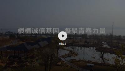 原创视频|根植诚信基因 凝聚青春力量 2020中国网络诚信大会,他们这样说……