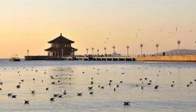 读懂青岛2020丨高水平开放格局中的百年青岛