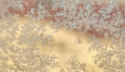青岛迎来极寒天气,窗户上的冰花美极了!