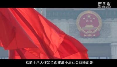 彪炳史册的伟大奇迹——中国脱贫攻坚全纪实