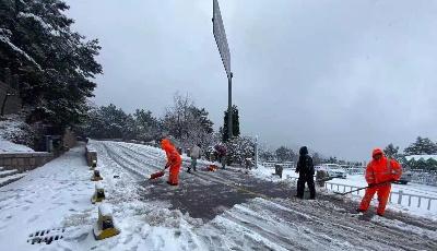 崂山景区启动除雪应急预案 加大人手清理积雪