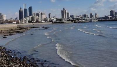 """青岛自贸片区在全国率先开启""""区、关、税""""信用合作机制建设"""