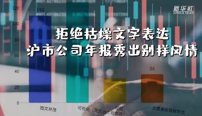 拒绝枯燥文字表述 沪市公司年报秀出别样风情