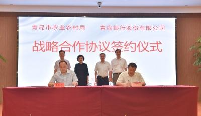 每年百億授信!青島銀行與青島市農業農村局簽訂金融支持鄉村振興戰略合作協議