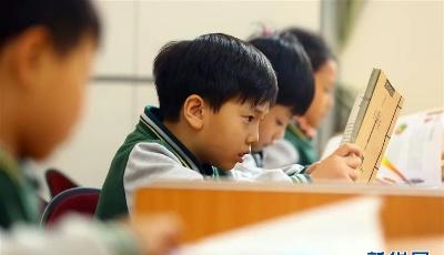 8月2日起,青島各小學試點暑期托管服務,收費標準公開
