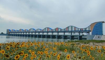 總投資1.627億元 北膠萊河新河蓄水防潮閘除險加固工程順利通過驗收